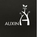 Auxin-logo